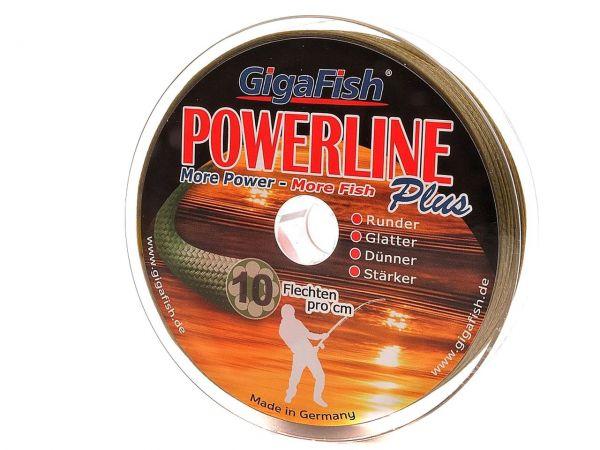 Powerline Pro Wels Haupt - Angelschnur